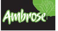 1ssdbdd-ambrose-logo